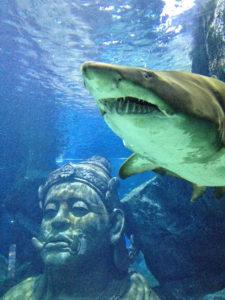 サイアムパラゴン水族館
